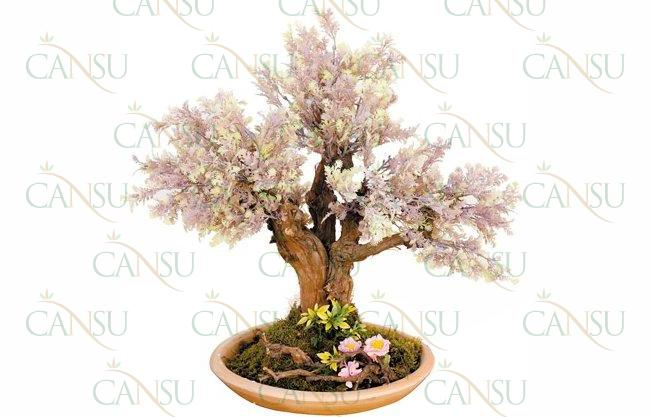 Yapay Bonsai, Model No: CT-02-174